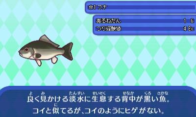フナ - コピー.JPG