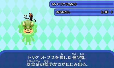 トリケラのかお_0.JPG