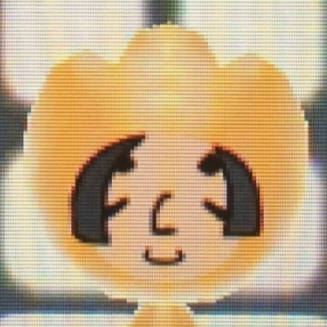 電波人間のRPGFREEwiki髪資料24.jpg